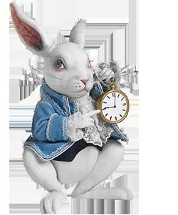 agt-nl-rabbithole